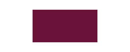 SY_VICI_logo